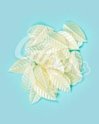 Вафельные листики «Лист Ясеня», мелкий, цвет белый