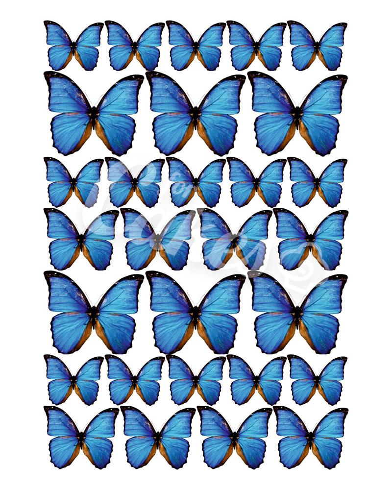 Как сделать бабочки из вафельной бумаги